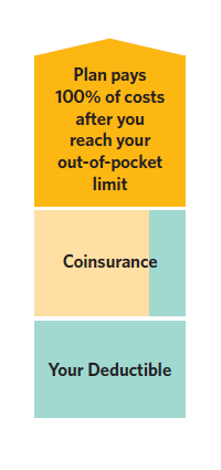 vertical chart explaining your out of pocket costs